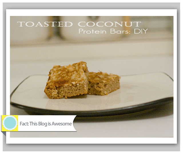 Stephanie Drummond, fact this blog is awesome, homemade protein bars, DIY, do it yourself