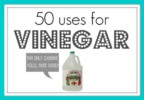 50 Uses For Vinegar Unordered List Adventures
