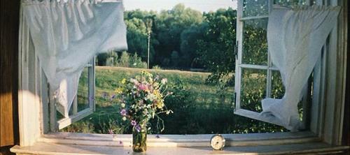 Resultado de imagem para cortinas voando na janela com flores