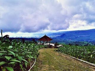 Wisata Alam Posong Kabupaten Temanggung