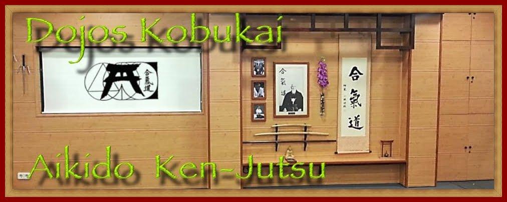 KOBUKAI - Escuela de Aikido Sabadell