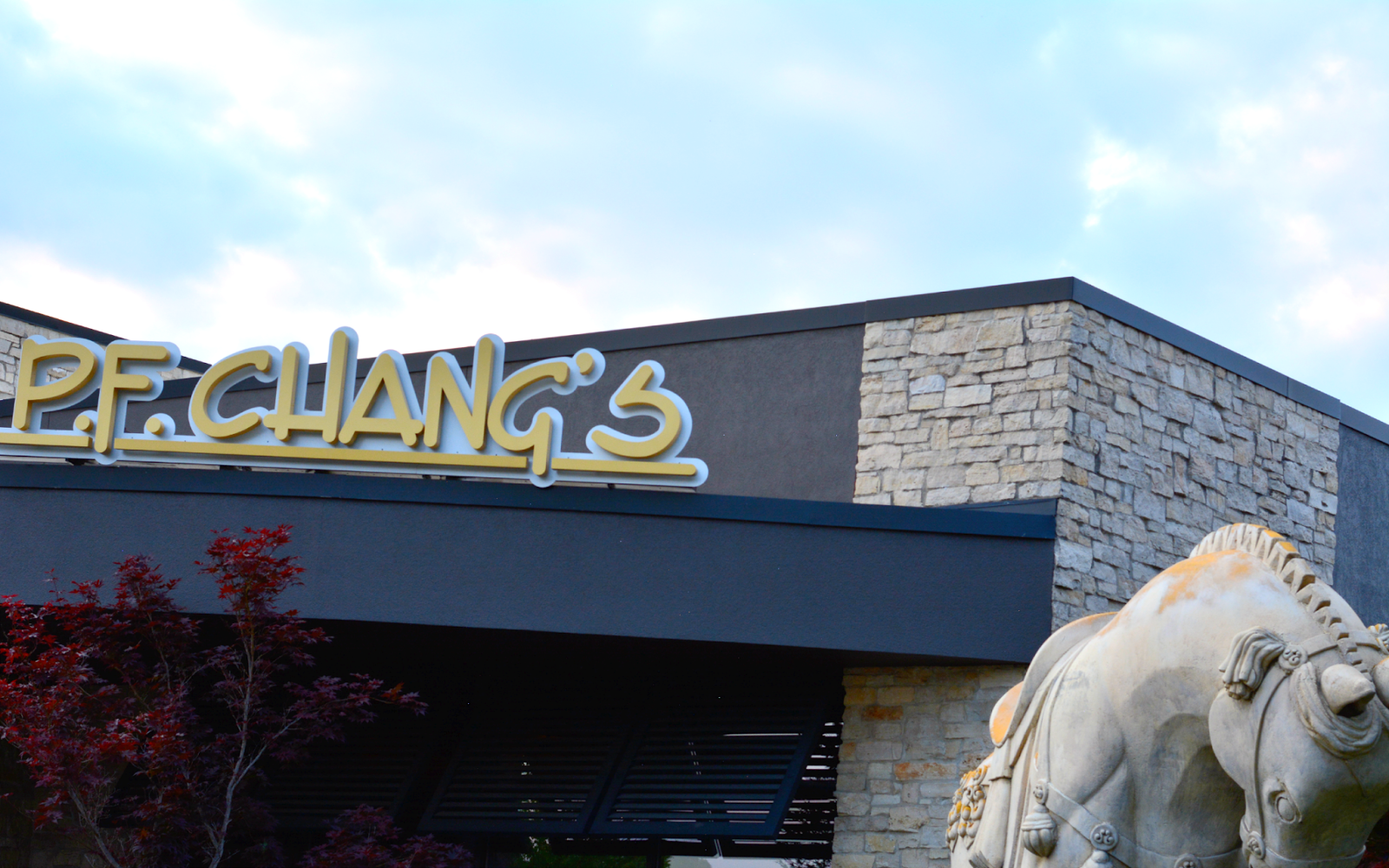 p.f. chang's in northbrook illinois chicago