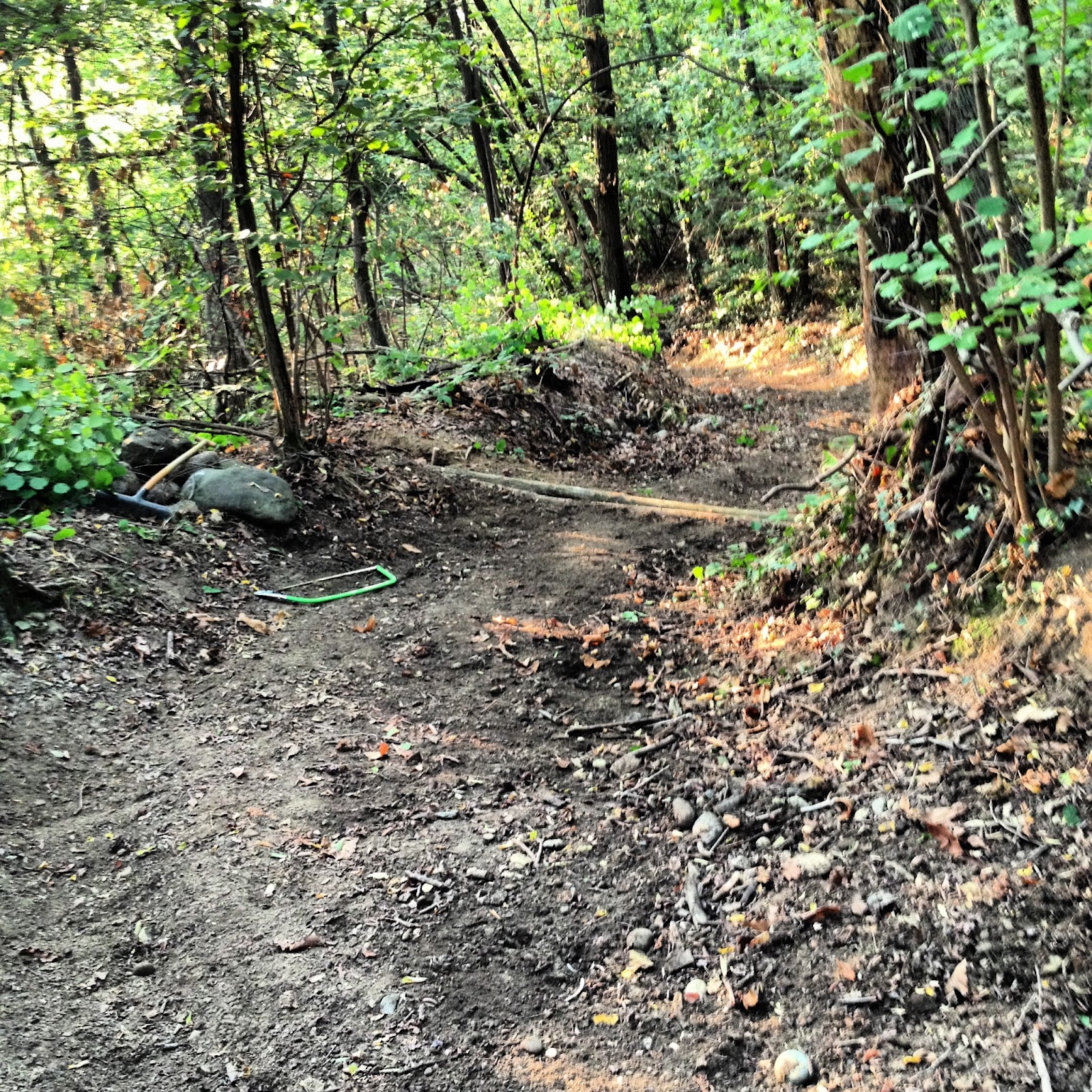 Sassibikers i tre diagonali for Cabina innevata nei boschi