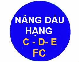 ► Nâng Dấu Bằng Lái Xe C, D, E, FC