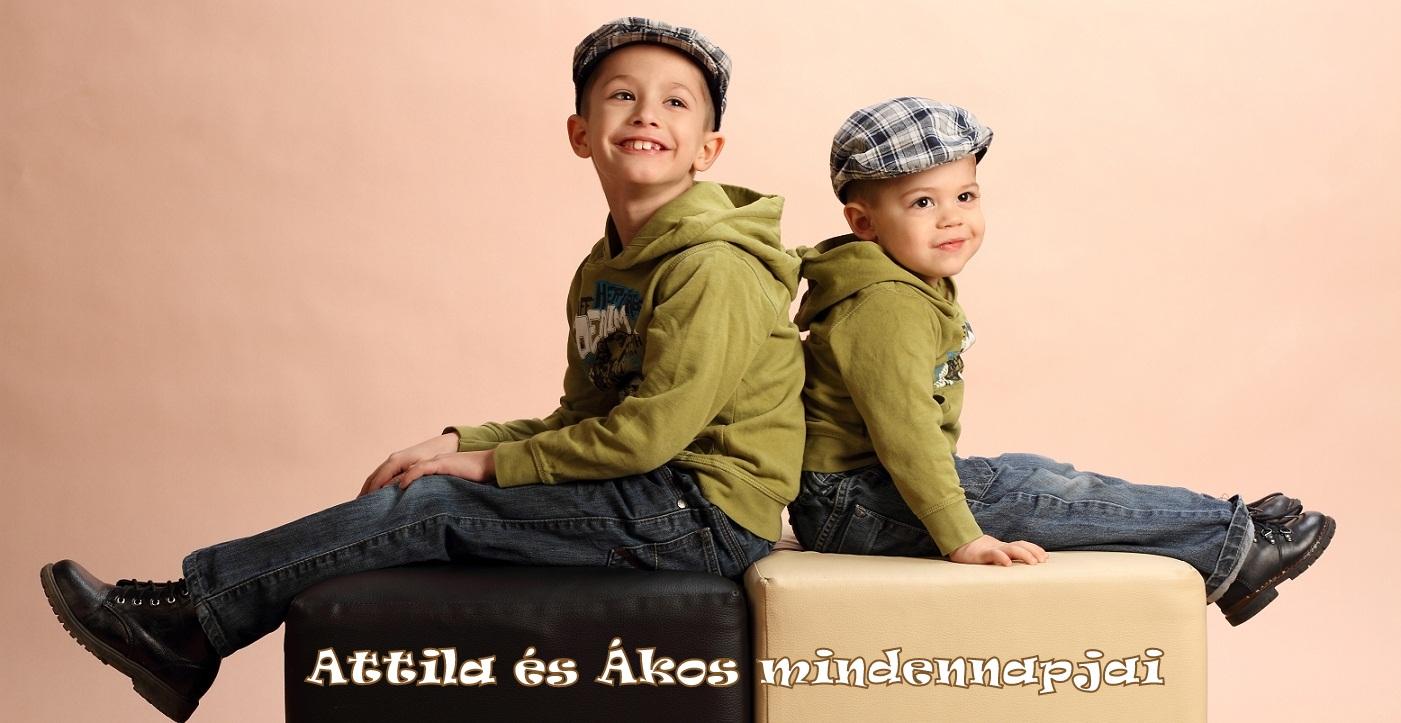 Attila és Ákos mindennapjai