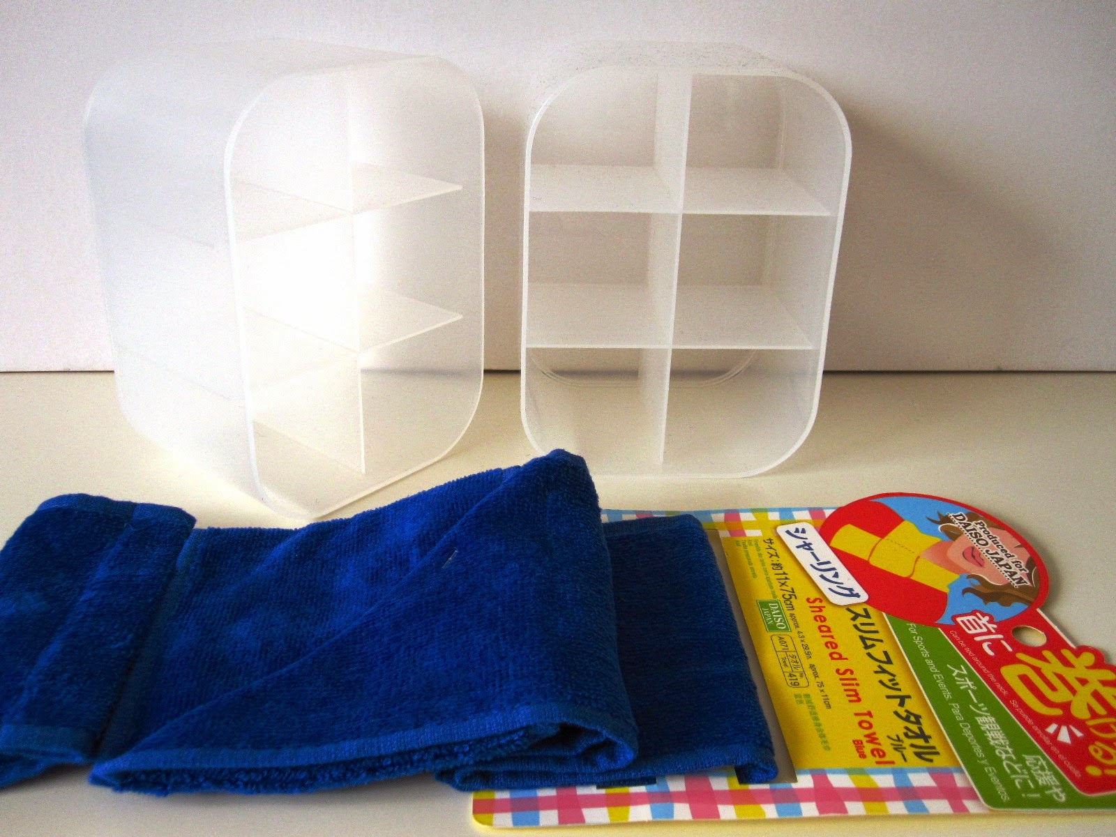 Two opaque plastic storage containers and a blue neck scarf from Daiso.