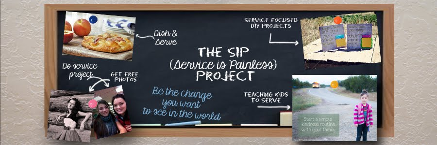 The S.I.P. Project (Service Is Painless)