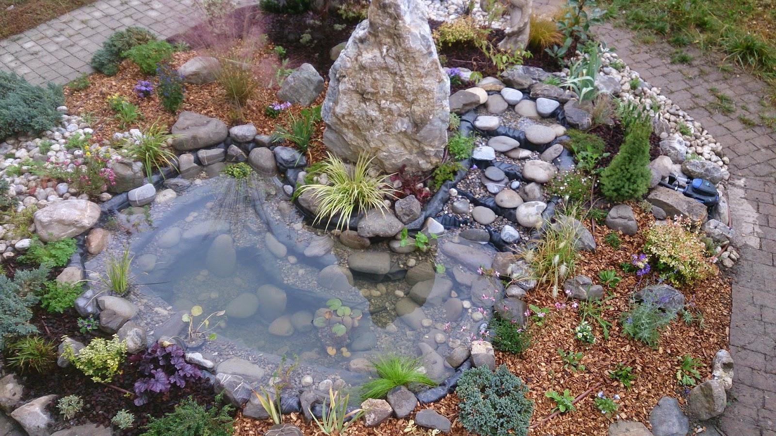 réalisation dun coin japonais avec bassin et cascade