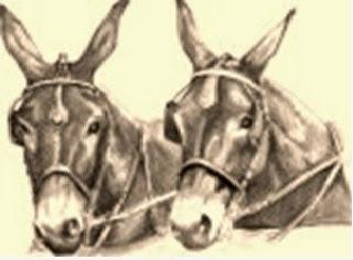 I due muli da soma (Fedro)