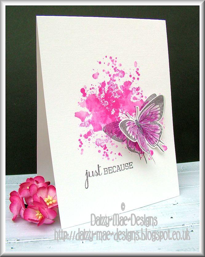 pink, butterfly,CAS