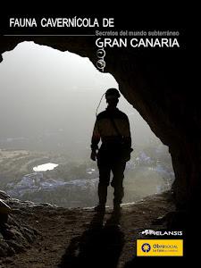 Fauna cavernícola de Gran Canaria