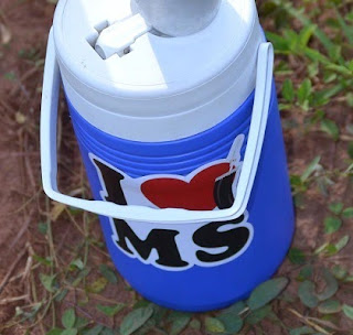 Adesivo Logo Padrão - I Love MS