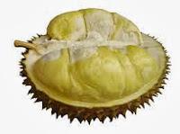 durian K-link