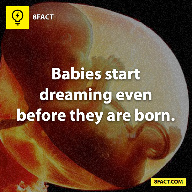Babies start dreaming even before they are born