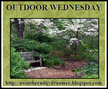 Susan&#39;s Outdoor Wednesday