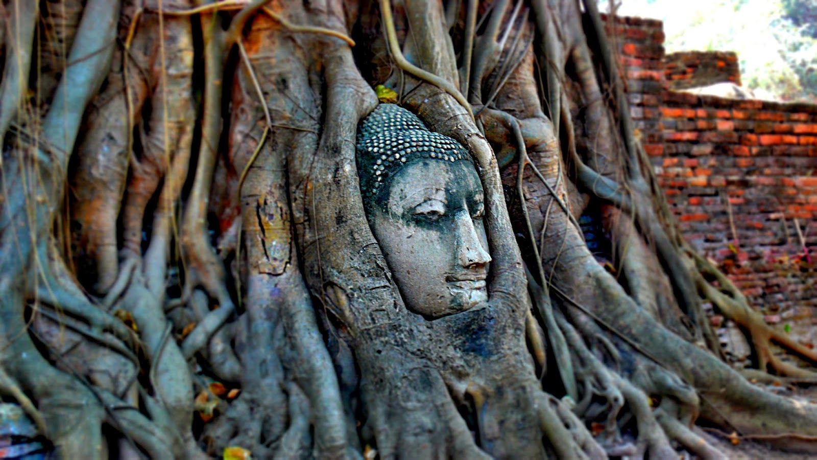 Historical Park Ayutthaya