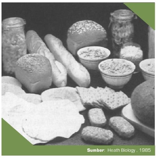 Landasan Teori Percobaan Uji Makanan
