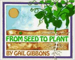 http://www.amazon.com/Seed-Plant-Gail-Gibbons/dp/0823410250/ref=sr_1_1?s=books&ie=UTF8&qid=1399999411&sr=1-1&keywords=from+seed+to+plant