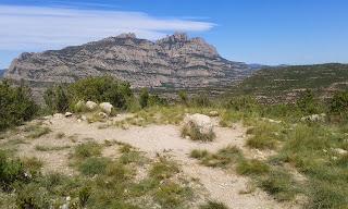 Puig Cendrós (El repte dels 100 cims)