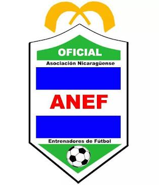 ANEF - NICARAGUA