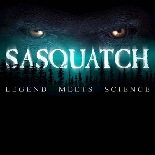 Finding Bigfoot: An Inside Look at Sasquatch Tourism
