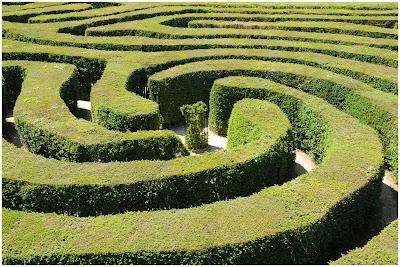 no labirinto