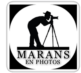 "Page Facebook ""Marans en Photos"""