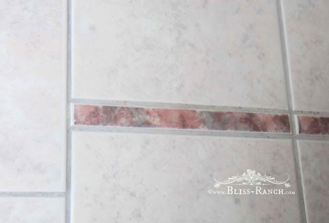 Old Tile, Jack & Jill Bathroom Redo Bliss-Ranch.com