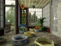WitchLot-greenhouse1.jpg