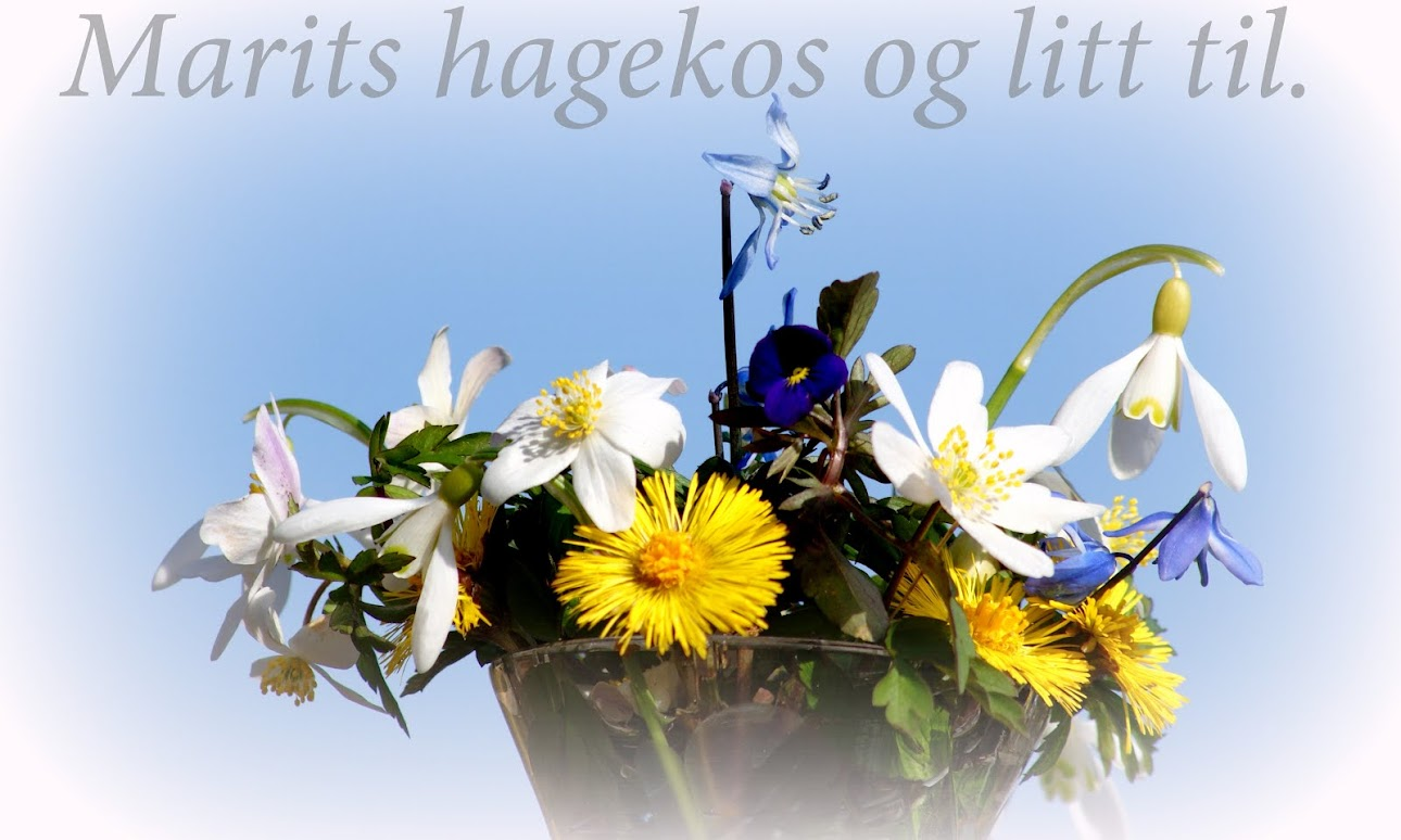 marits hagekos og litt til,,,,