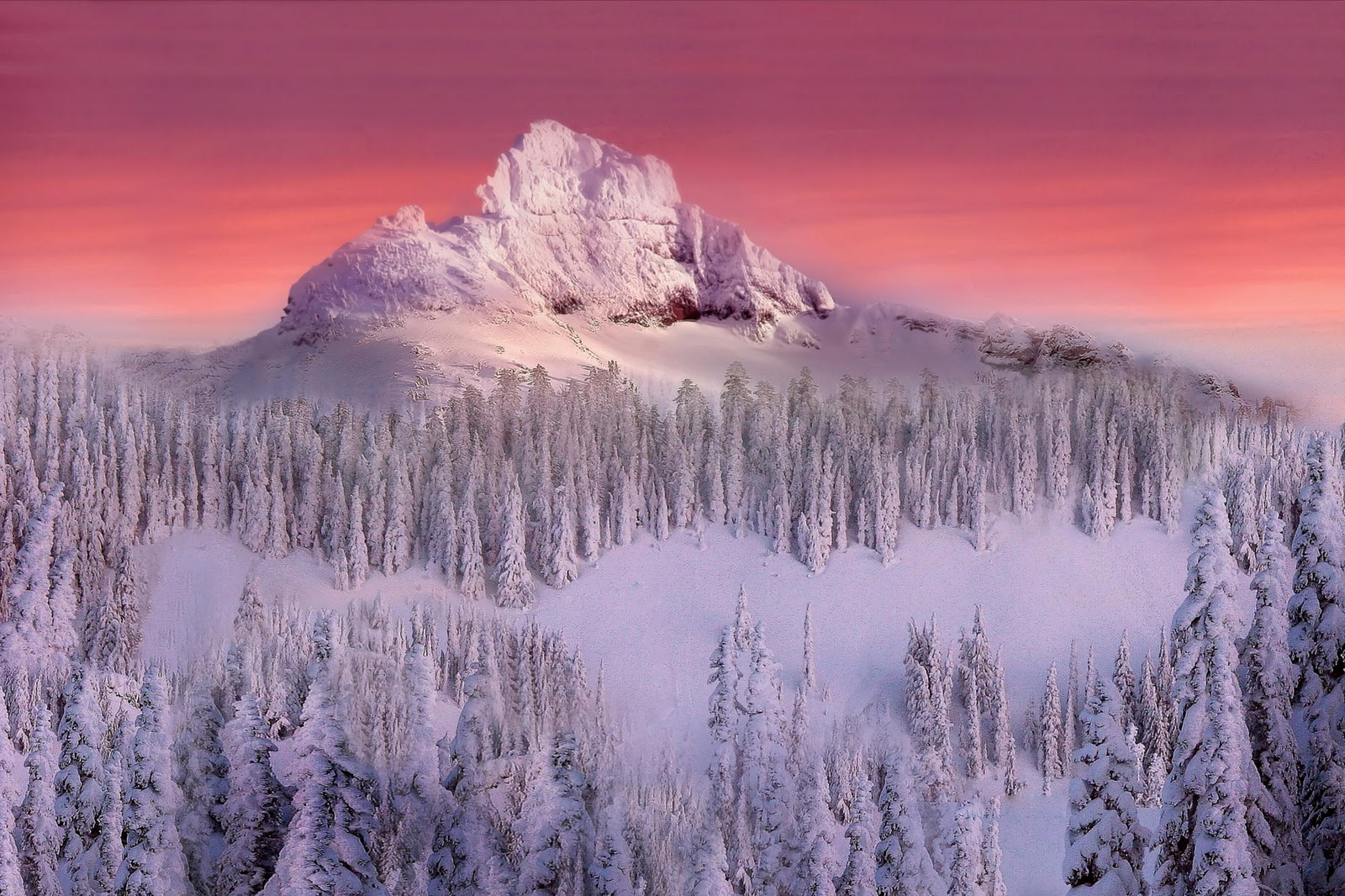 awesome nature wallpapers winter - photo #12