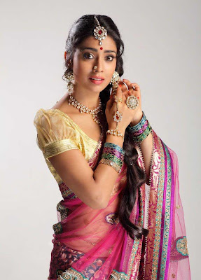 shriya saran new saree photo gallery