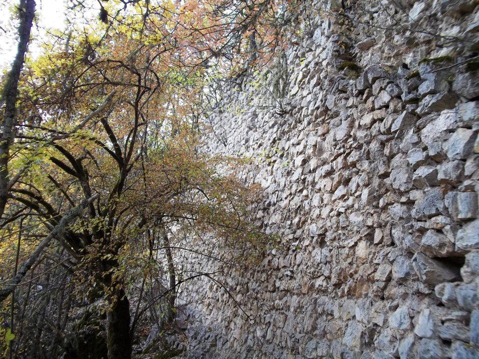 Древни град Борач, у земљи Павловића 63139_10151338175317952_612442584_n