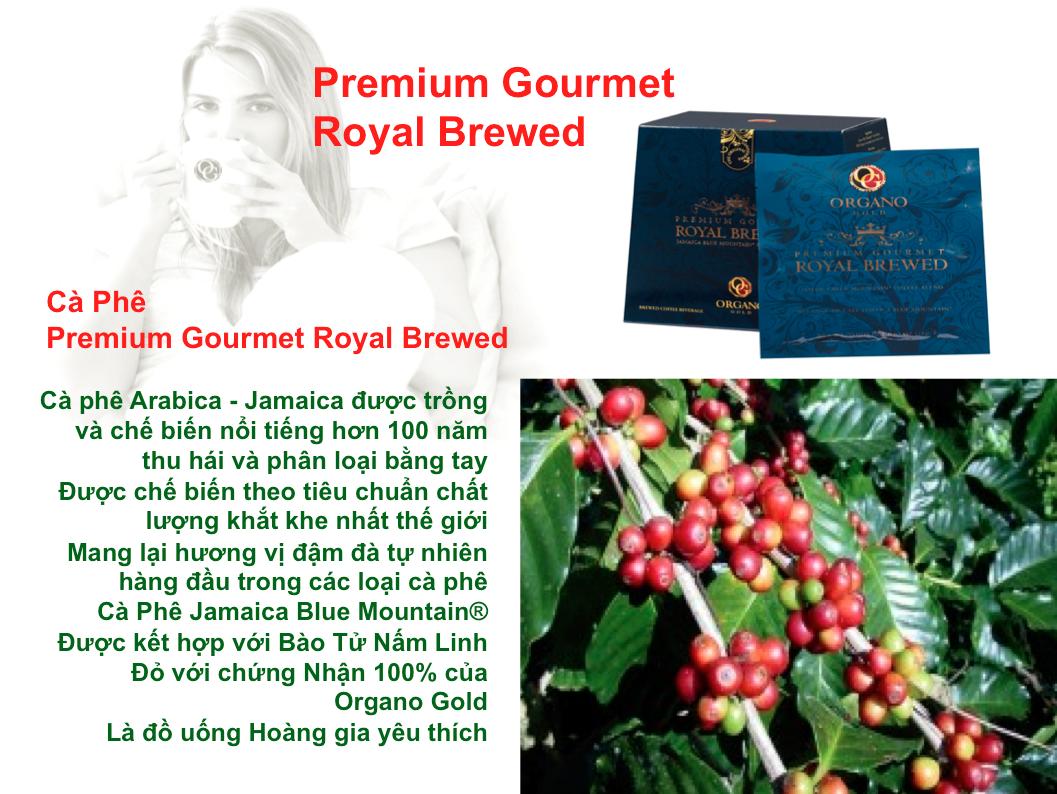 Thực phẩm chức năng Premium Gourmet Royal Brewed Organo Gold Cafe Hoàng Gia