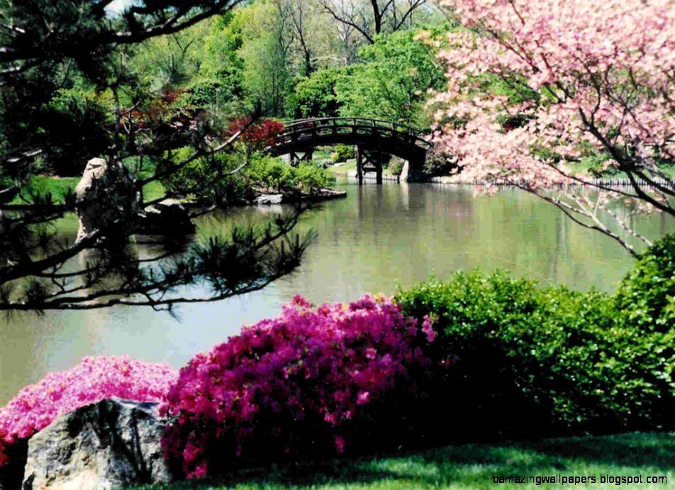 Spring Garden Wallpaper spring in japanese garden   Truly Hand