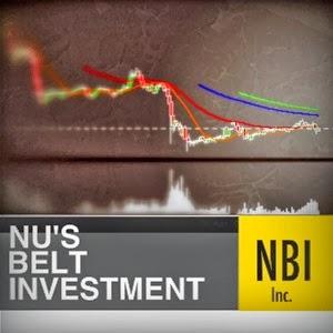 NUS BELT INVESTMENT