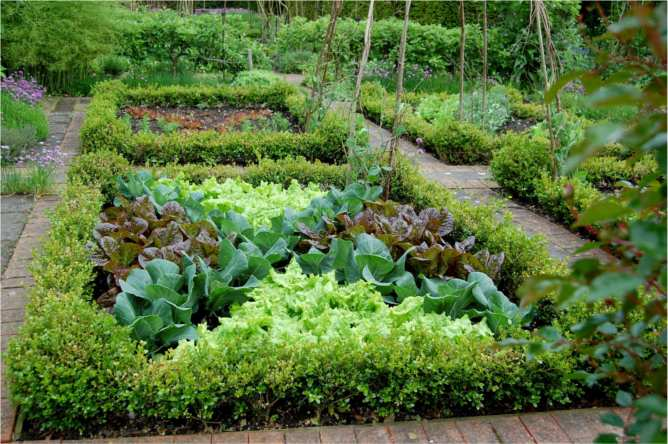 Veggie Garden Design Of Seed To Feed Me Potagers