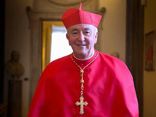 Cardinal Vin