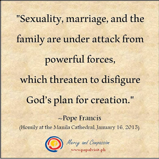 Pope Francis on the attack on sexuality, marriage, and the family
