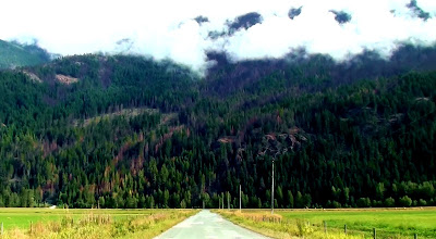 Straight country road leads to forest and mountains shrouded in clouds