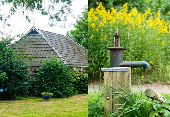 Farm and water pump