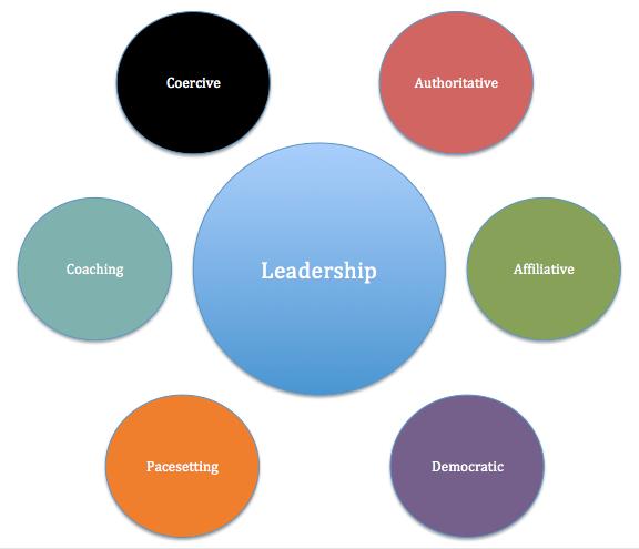 sample resume leadership qualities - Sample Resume Leadership Skills