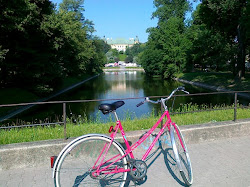 mój rower (2)