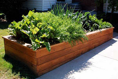 wood-planter-box