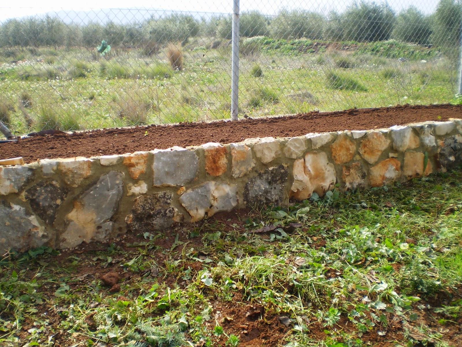 Cultivar el huerto casero sembrar zanahorias y r banos - Piedras para jardineras ...