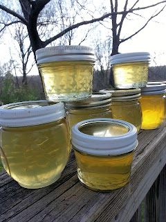 canning, jelly, preserve, flower, dandelion