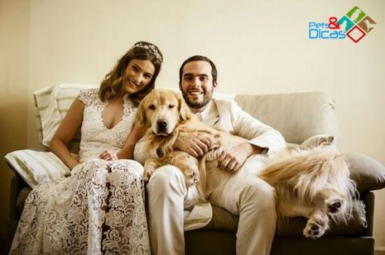 Cachorro com noivos