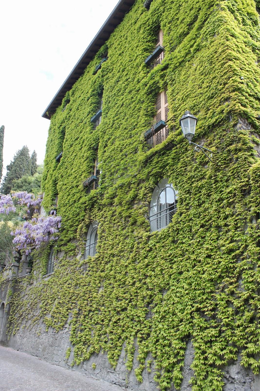 Italian Garden with Ivy; Lake Como 3