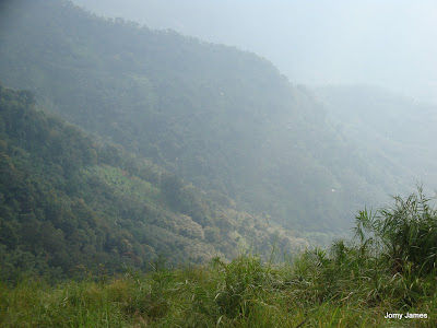 Idukki Forest Reserve