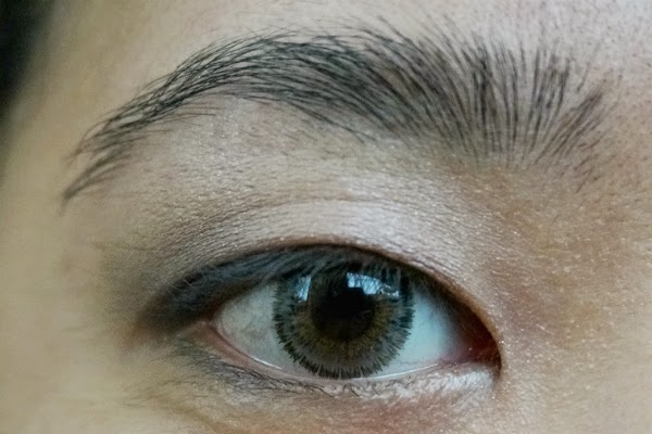 Maybelline Expert Wear Eyeshadow in 10Q Mocha Motion